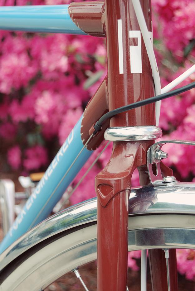 Folk Engineered Stitched Bike