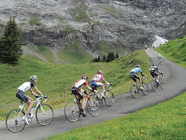 Boutique Cycle Tours