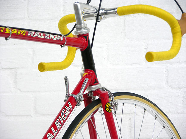 Raleigh Team Professional