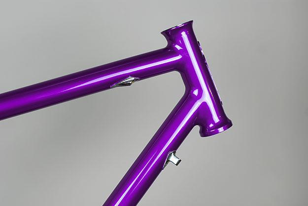 No Quarter Purple