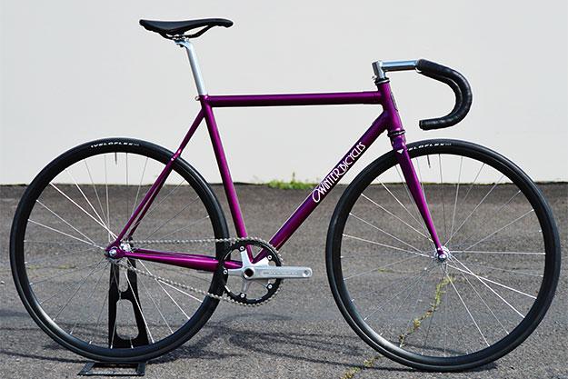 Winter Bicycles Velvet Hammer