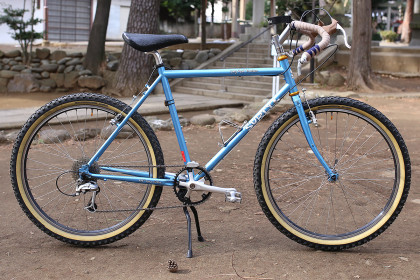 Kamiuma Harlequin: Blue Lug Surly Long Haul trucker
