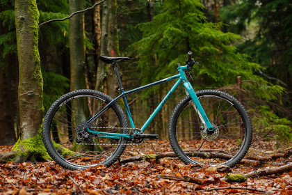 The Well-Dressed Woodsman: Andrew's 29er Field Cycles