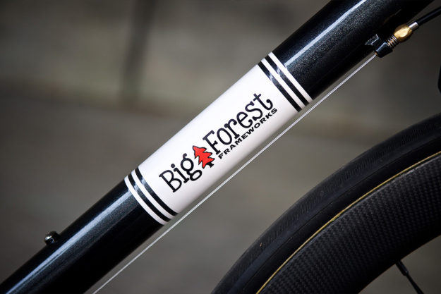See Into The Trees: Nica's Big Forest Factory Racer