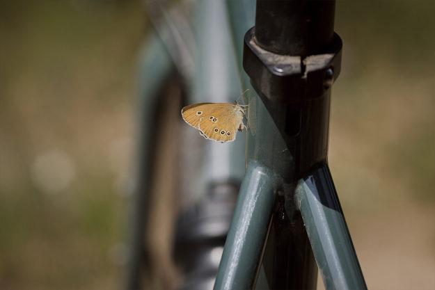 Gelände Straße: Cicli Bonanno Stay Loco