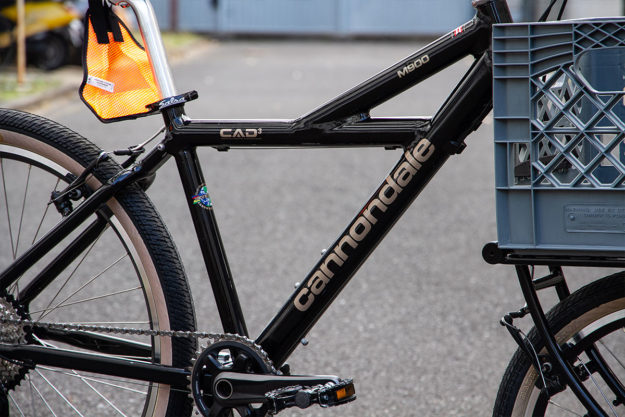 2019's Gonna Be A Killer Year: Cannondale M900 By Blue Lug